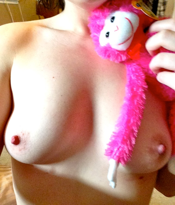 rose_love_monkey